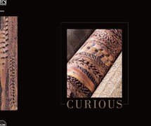 BN Wallcovering curious behangboek