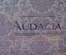 Dutch Wallcoverings Audacia behangboek