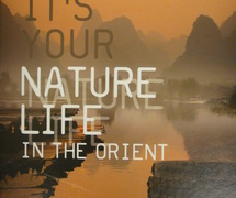 BN Wallcoverings Urban life & Nature life behangboek