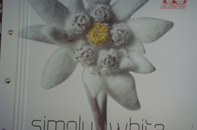 AS Creation - Simply White 2